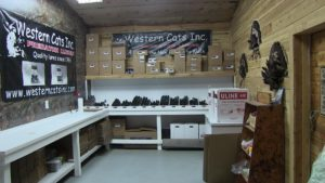 Western Cats Shipping Room