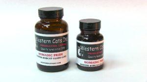 Western Cats Nomadic Pride Lure